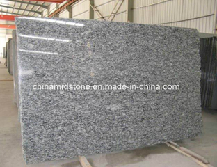 Spray precortado White Granite Gangsaw Size Slab para Medio Oriente